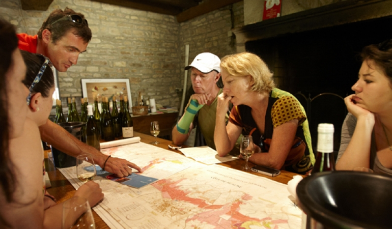 Dans un domaine viticole