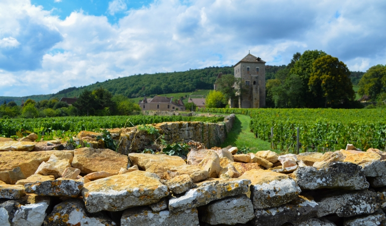 Chateau de Gevrey Chambertin